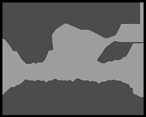 GTEG-g